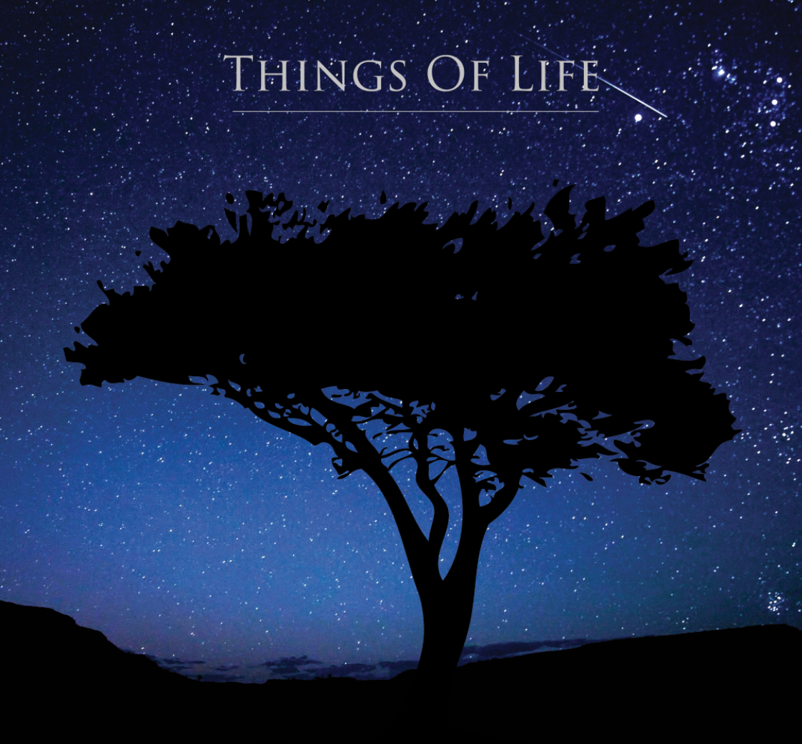 Things Of Life 2013 Cover
